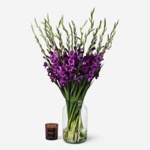 Gladiolus20Plumberry20Fresh20Flower20Venera20Flowers201 1