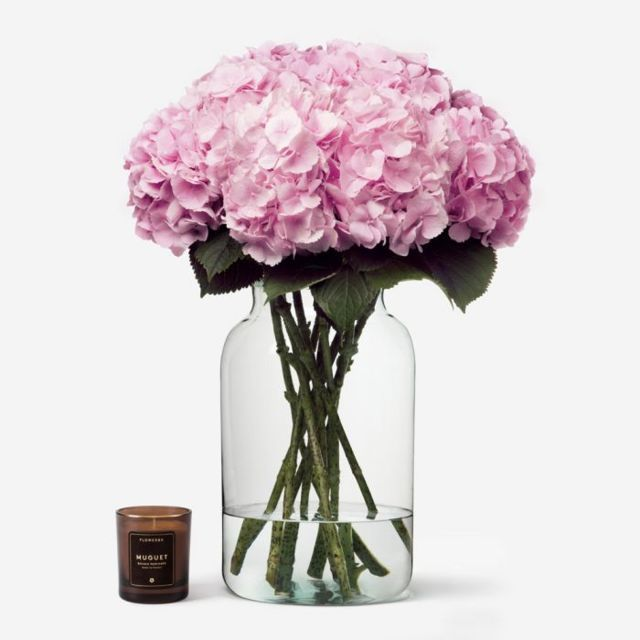 Hydrangea20Light20Pink20Flower20Venera20Flowers203 1