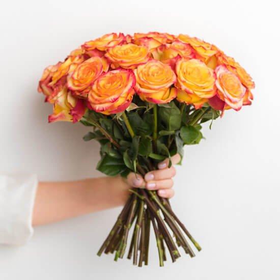 Rose20Orange203520Flower20Venera20Flowers201 1