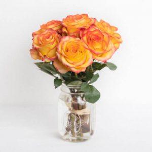 Rose20Orange20Vase20720Flower20Venera20Flowers201 1