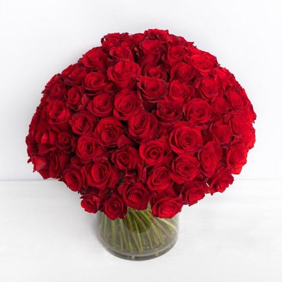 Rose20Red2010120Flower20Venera20flowers203 1