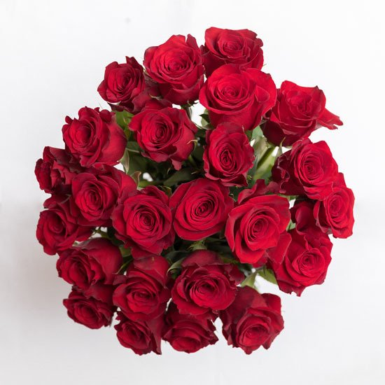 Rose20Red20Vase20Flower20Venera20Flowers203 1