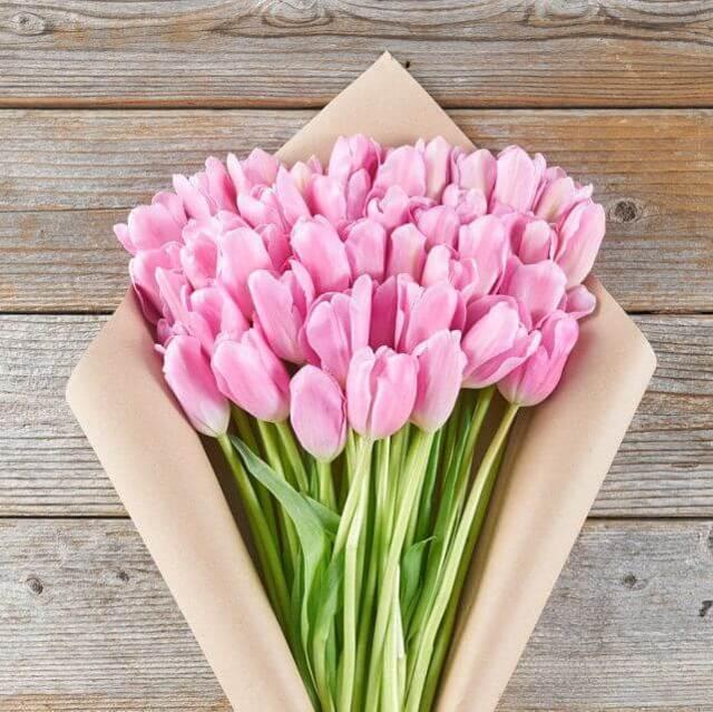 Tulip20Pink20Flower20Venera20Flowers203 1