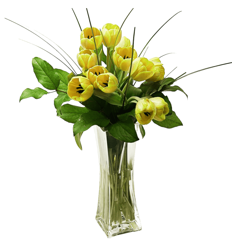 Tulip20Vase20All20colors20Fresh20flowers20Venera20Flowers203 1